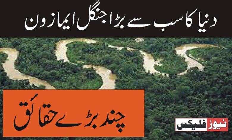 دنیا کا سب سے بڑا جنگل _ ایمازون
