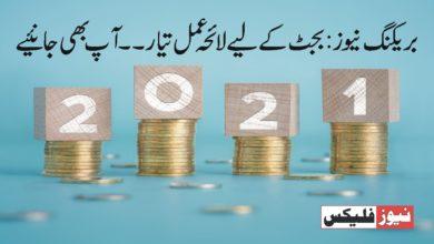 ایف بی آر نے آئندہ بجٹ 2021-22 میں انکم ٹیکس سلیب کو 11 سے 5 تک کم کرنے کا منصوبہ بنایا ہے