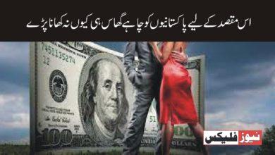 اس مقصد کے لئے چاہے پاکستانیوں کو گھاس ہی کیوں نہ کھانی پڑے