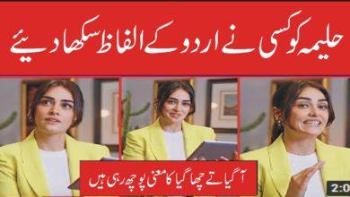 حلیمہ سلطان کو کسی نے اردو کے الفاظ سکھا دئیے
