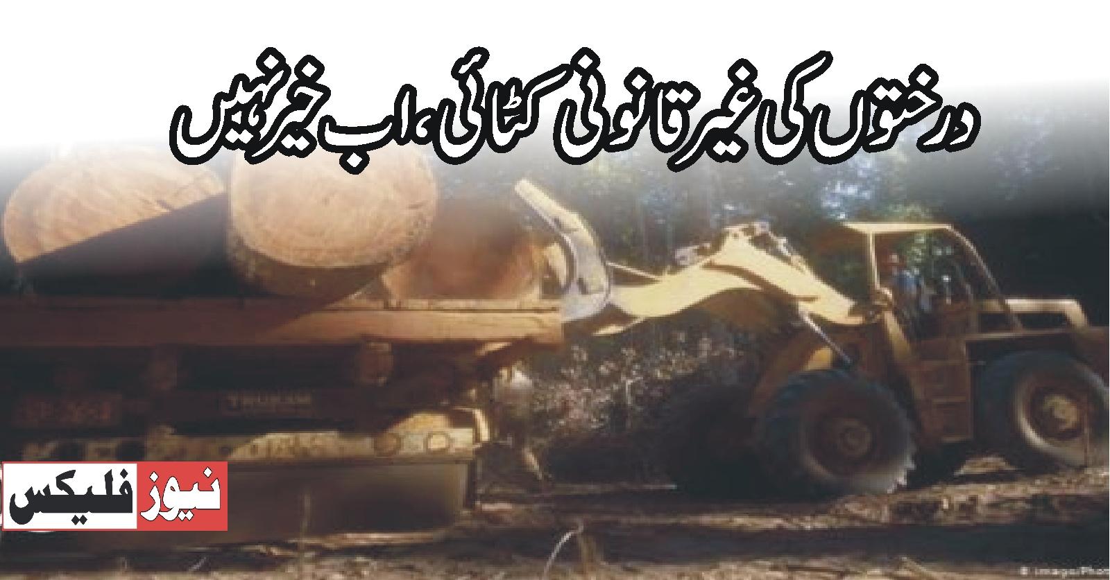 سانگھڑ غیر قانونی درخت کٹائی پر قانونی کارروائی ہوگی ڈی سی سانگھڑ عمران الحسن خواجہ