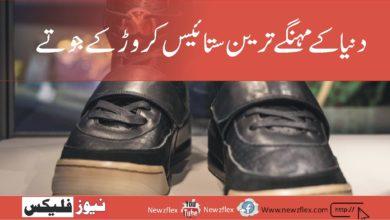 دنیا کے مہنگے ترین ستائیس کروڑکے جوتے