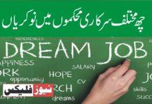 چھ مختلف سرکاری محکموں میں نوکریاں