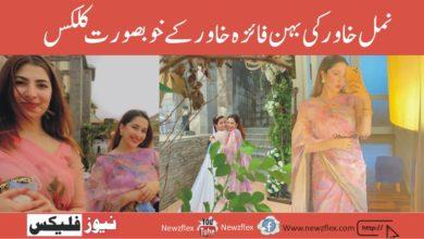نمل خاورکی بہن فائزہ خاورکے دوست کی شادی سے کچھ کلکس