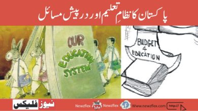Pakistan's education system and the problems it faces