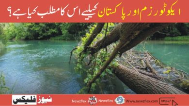 Ecotourism & What It Means For Pakistan