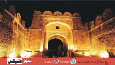 Rohat Fort been allotted Rs 1.25 billion for facilities