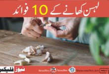 Top 10 Health Benefits of Eating Garlic