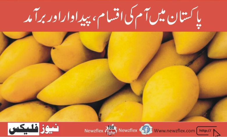Mangoes in Pakistan: Varieties, Production & Export