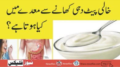 What happens in the stomach when you eat yogurt on an empty stomach?