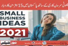15 Best Business Ideas In Pakistan With Small Investment 2021