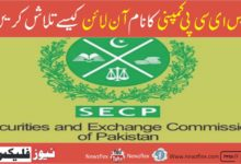 How to search SECP company name online