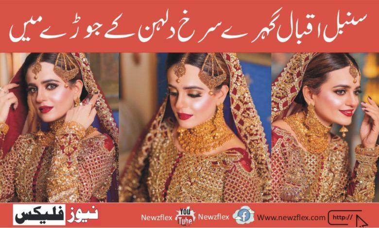 Sumbul Iqbal Looks Ravishing In Deep Red Bridal Ensemble