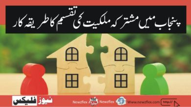 The Procedure for Partition of Jointly Owned Property in Punjab