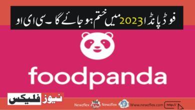 Foodpanda to reach break even in 2023: CEO.