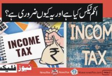 What is Income Tax and Why is It Important?