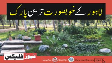 Exploring The Most Beautiful Parks in Lahore